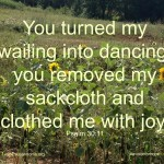 Psalm 30.11