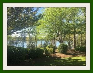 Lake Lanier 2